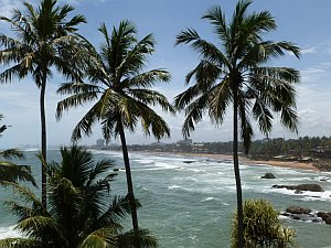 sri-lanka-coastline-and-trees