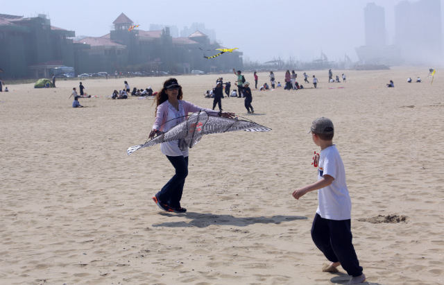 Kite day on the beach