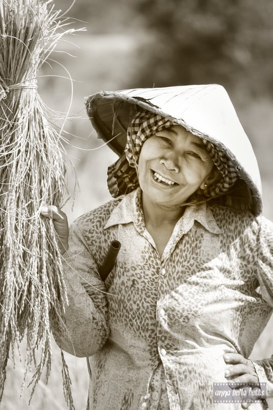 Harvest Smile